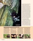Barakuda Reiseangebote 2012 - Unterwasser - Seite 5