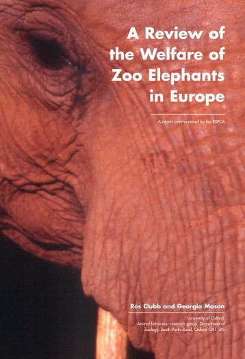 A Review of the Welfare of Zoo Elephants in Europe - Humane ...