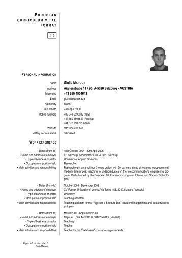 European Cv Resume Sample