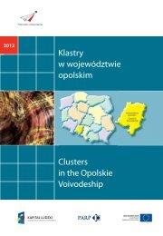Klastry w województwie opolskim Clusters in the ... - Portal Innowacji