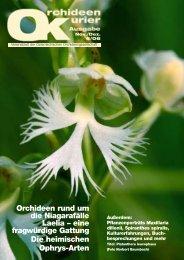 Fensterbankblues: Zurück in den vier Wänden - Austrian Orchid ...