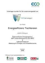 Energieeffizienz Tischlereien - WIN - Steiermark