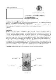 Chirurgische Aufklärung Nierentransplantation