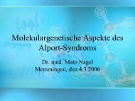 Molekulargenetische Aspekte des Alport-Syndroms - Nephrogene.com