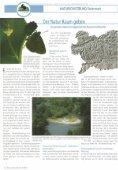 NATURSCHUTZBUND Steiermark - Seite 6