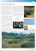 Moorreiche Steiermark - Seite 3