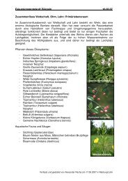 Exkursion 4: Kiesgrube Bürgeln (pdf, 1,5 MB - LCRS
