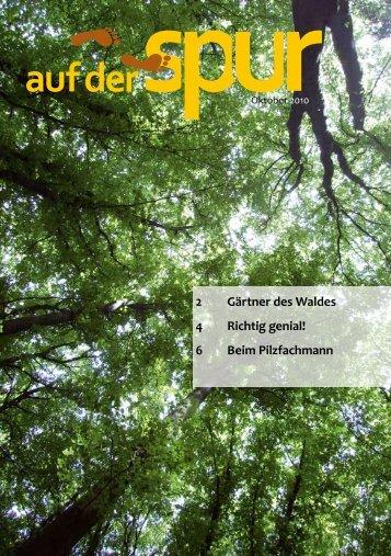 2 Gärtner des Waldes 4 Richtig genial! 6 Beim Pilzfachmann