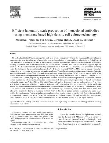 an investigation in monoclonal antibodies Investigation of a panel of monoclonal antibodies and polyclonal sera against  anthrax toxins resulted in identification of an anti-lethal factor antibody with.