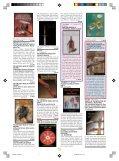 veicoli militari - corazzati - Tuttostoria - Page 7