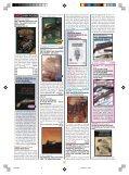 tutto storia - Page 5