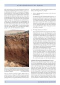 in Boden - European Land and Soil Alliance (ELSA) - Seite 6