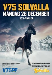 01_V75_S_Grundmall 2011-12-18 21.54 Sida 2 - Solvalla