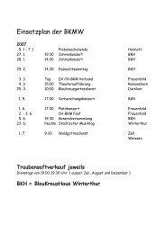 Ausgabe 30 vom Dezember 2006 - Blaukreuzmusik Winterthur