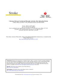 Coherence Between Cortical and Muscular Activities After ... - Stroke