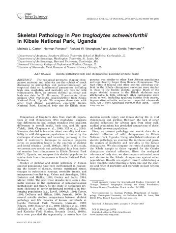 Skeletal pathology in Pan troglodytes schweinfurthii in ... - Index of