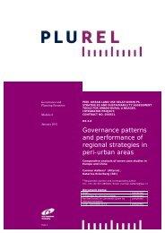 Assessment of European regional governance and ... - Plurel