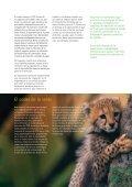 Reducci - Page 7
