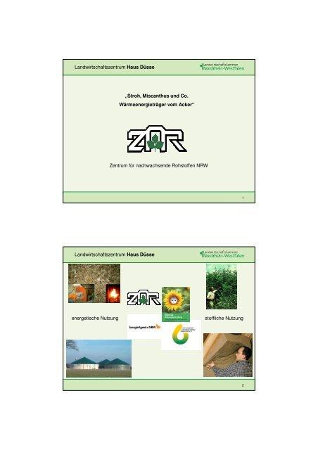Wärme aus Biomasse - Stroh, Miscanthus und Co 14.02.2012 fürs ...