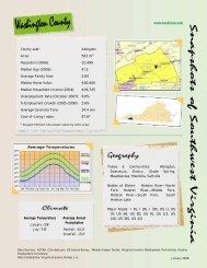Towns & Communities: Abingdon, Damascus, Emory ... - SVPEC
