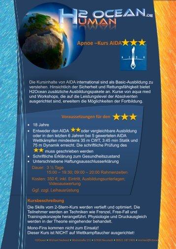 Allgemeine Kursbeschreibung AIDA 3-Stern - michael-n.info