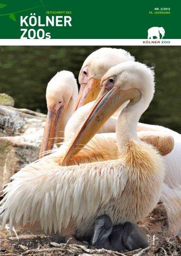 Nr. 2/2012, 55. Jahrgang (PDF) - Kölner Zoo
