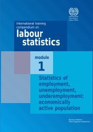 International training compendium on - labour statistics
