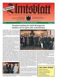Februar 2008 - Stadt Wernigerode