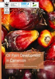 oil palm developments in Cameroon - Roundtable on Sustainable ...