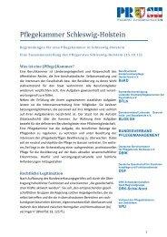Argumentationspapier Pflegekammer in Schleswig-Holstein