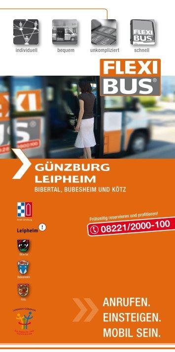08221/2000-100 - Flexibus