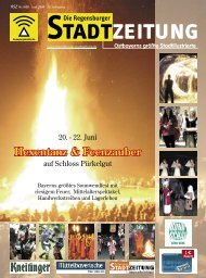 Download gesamte Ausgabe (PDF, 8899 kb) - Regensburger ...