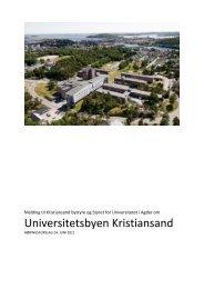 Meldingen om universitetsbyen - Universitetet i Agder