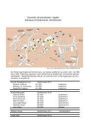 Oversikt Universitetet i Agder: Kampus Kristiansand, Gimlemoen