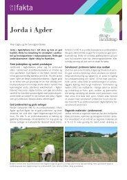 Jorda i Agder - Skog og landskap
