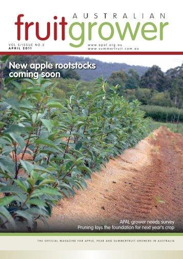 New apple rootstocks coming soon - Summerfruit Australia