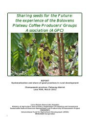 the experience of the Bolovens Plateau Coffee Producers - Procasur