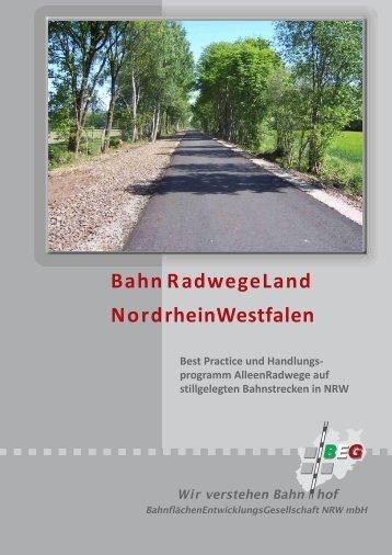 Leitfaden - BEG