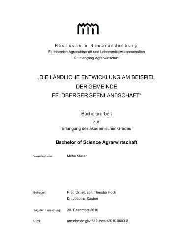 bachelor thesis hwr berlin