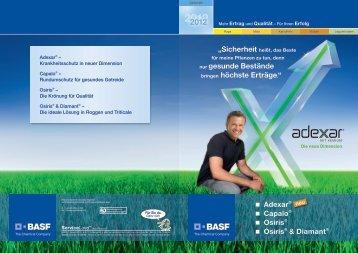 statt - BASF