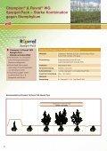 2012 - BASF - Seite 4