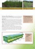 2012 - BASF - Seite 5