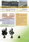 2012 - BASF - Seite 7