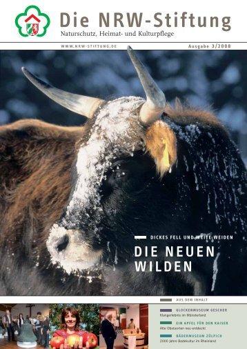 die neuen wilden - NRW-Stiftung
