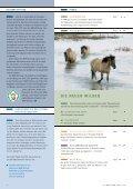 die neuen wilden - NRW-Stiftung - Seite 2