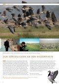 die neuen wilden - NRW-Stiftung - Seite 4