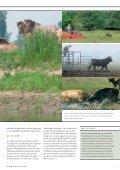die neuen wilden - NRW-Stiftung - Seite 7