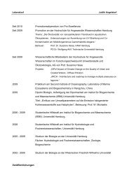 Lebenslauf als PDF