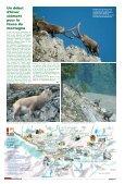 Notre air est pur, la preuve par les lichens - Terra Modana - Page 5