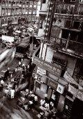 Kaupungeissa kasvaa mahdollisuus - Väestöliitto - Page 7